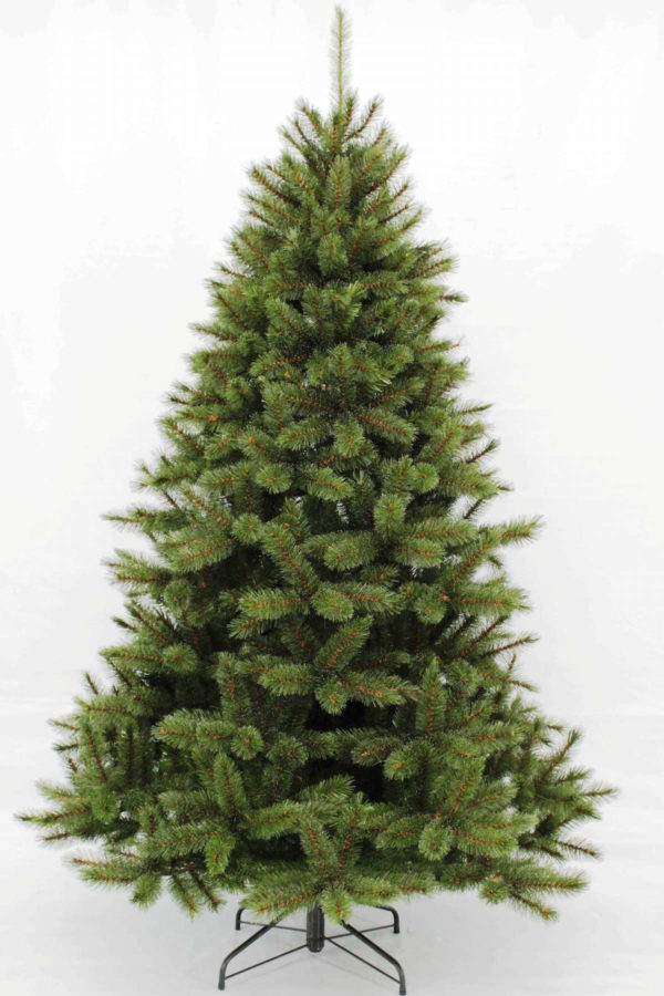 7ft Bristlecone Fir Christmas Tree Green Iced Tipped 2.13m