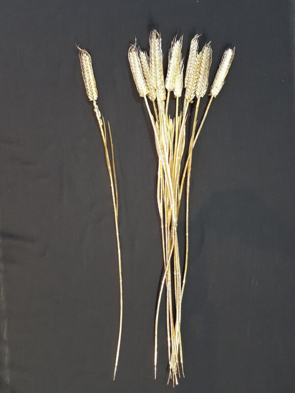 Wheat Single Gold Plated