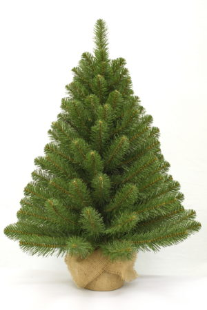 3ft Alpine Spruce Christmas Tree in Burlap covered base 91cm