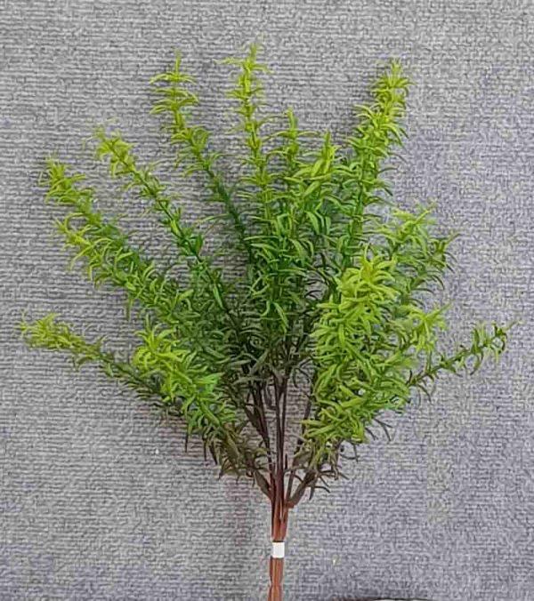 Rosemary Bush 45 cm