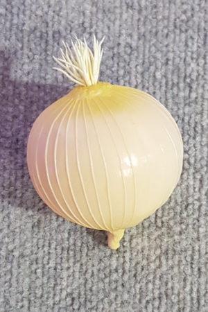 Vegetable Onion Single