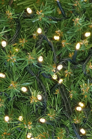 Christmas LED Lights x 100 Warm White (soft yellow) with Green cord