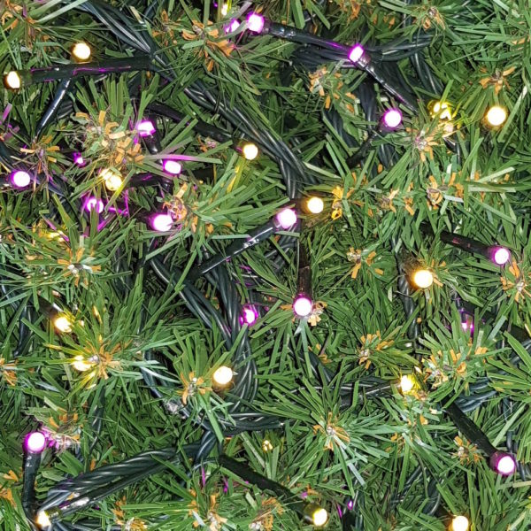 Christmas Tree LED Rice Lights x 160 Warm White – Purple/Pink with Green cord