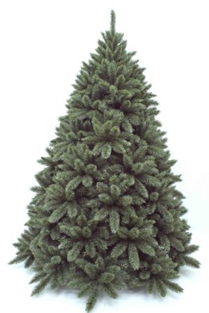 7.5ft Regal Spruce Christmas Tree New Growth Blue Green 2.28m