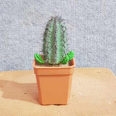 Fake Cactus – Saguaro Cactus Thorns