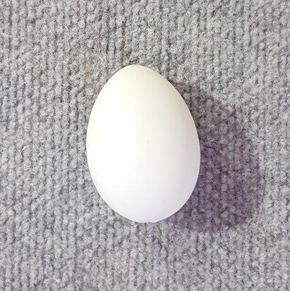 Egg Large White