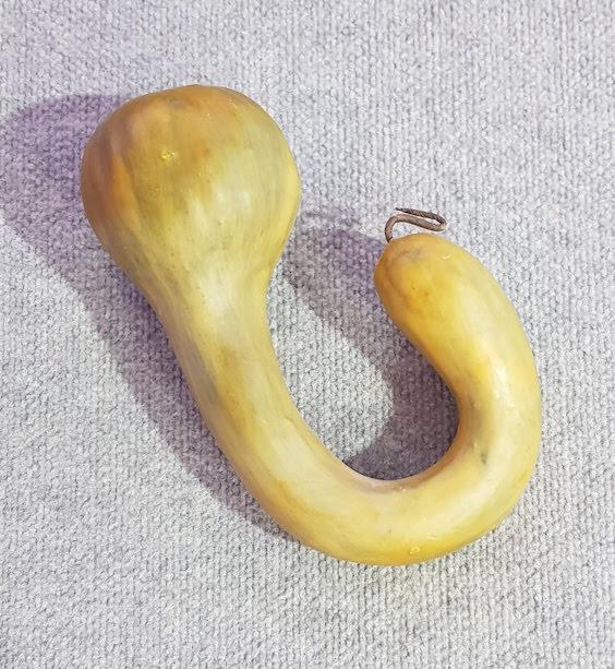 Vegetable Gourd Loop