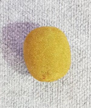 Fruit Kiwi Fruit Single