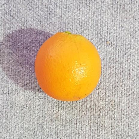 Orange Single