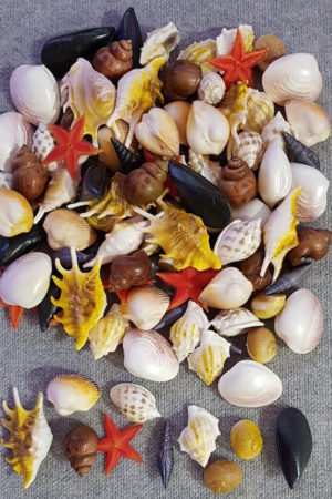 Fake Sea Shell Assorted x 100 pieces