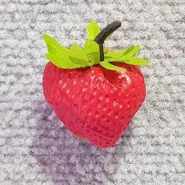 Fruit Strawberry Single