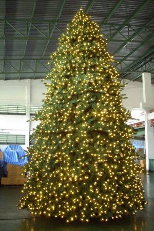 Paramount Spruce Christmas Tree Indoor with Lights