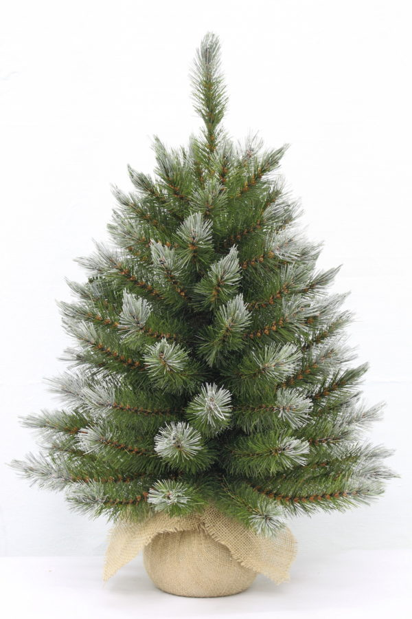 2ft Pittsburgh Spruce Christmas Tree Green Frosted 61cm in Burlap base