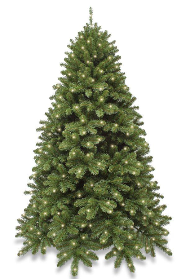 8ft Pre Lit Scandia Spruce Christmas Tree Hinged 2.44m