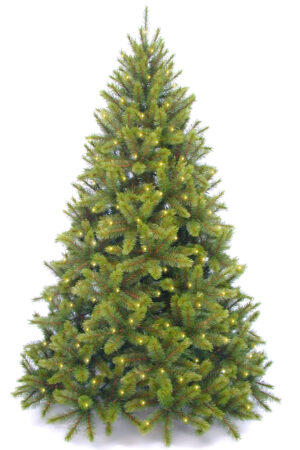 7ft Pre Lit Sierra-Nevada Tree Hinged 2.13mm with 520 Warm White LED's